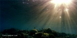 Sunlight breaking through onto Moray Gardens in Dahab Egy... by Jonny Simpson-Lee 